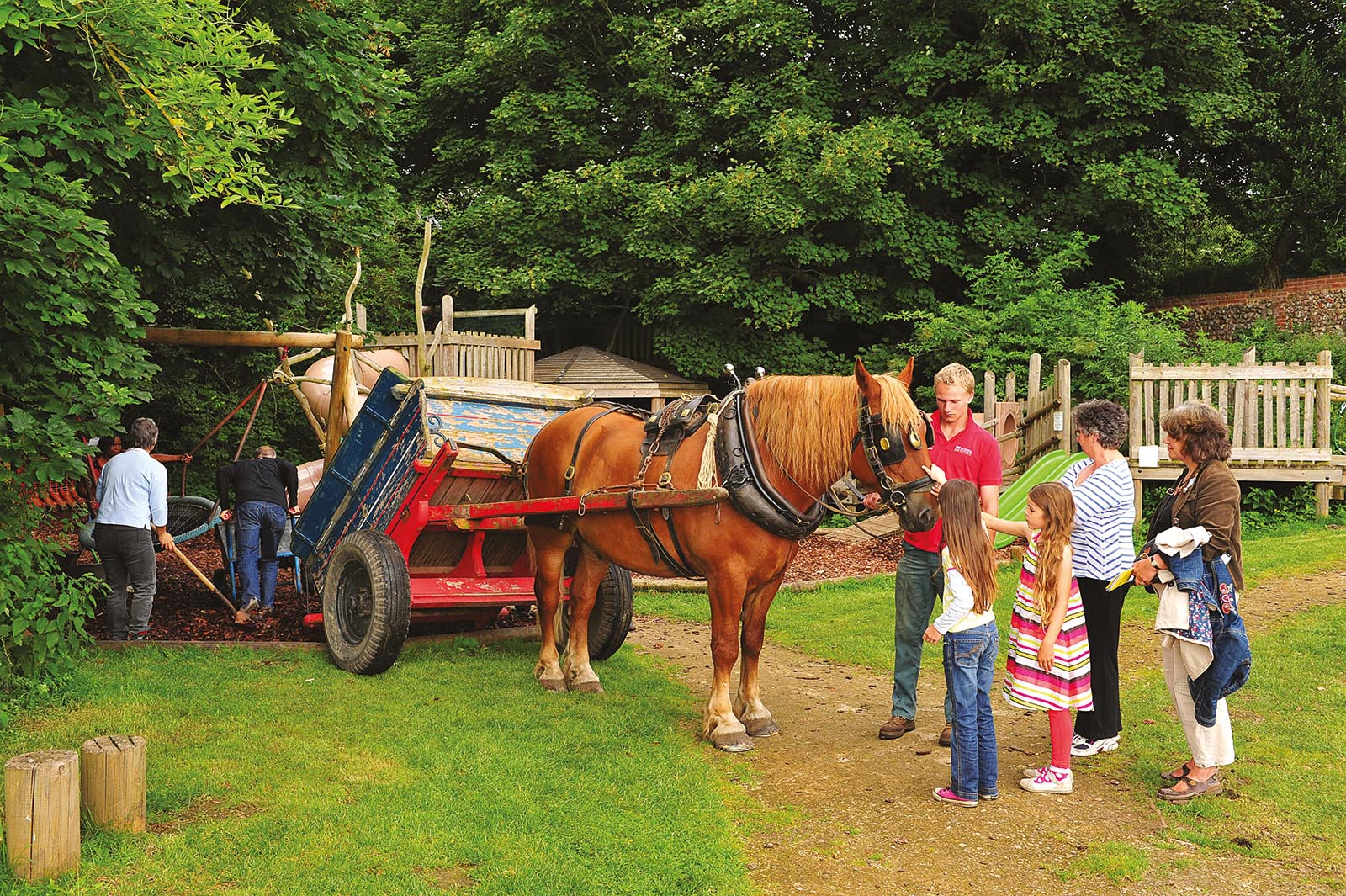 Gressenhall - Oscar and horse
